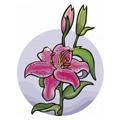Kādam ziedam Tu esi līdzīga/s?
